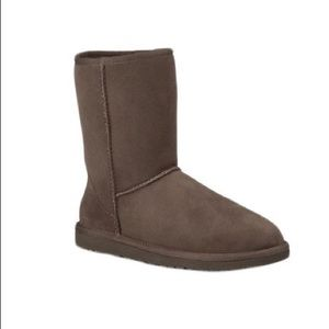 UGG Classic Short Boots in Chocolate